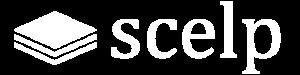 Supply Chain Excellence Leadership Platform (SCELP)